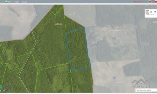 Waldgrundstück im Bezirk Ukmergė