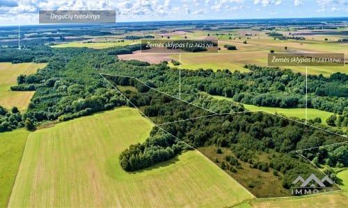Grundstück mit Wald